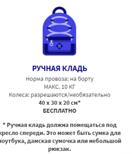 ruchnaya-klad-wizzair